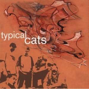 typicalcats_cover